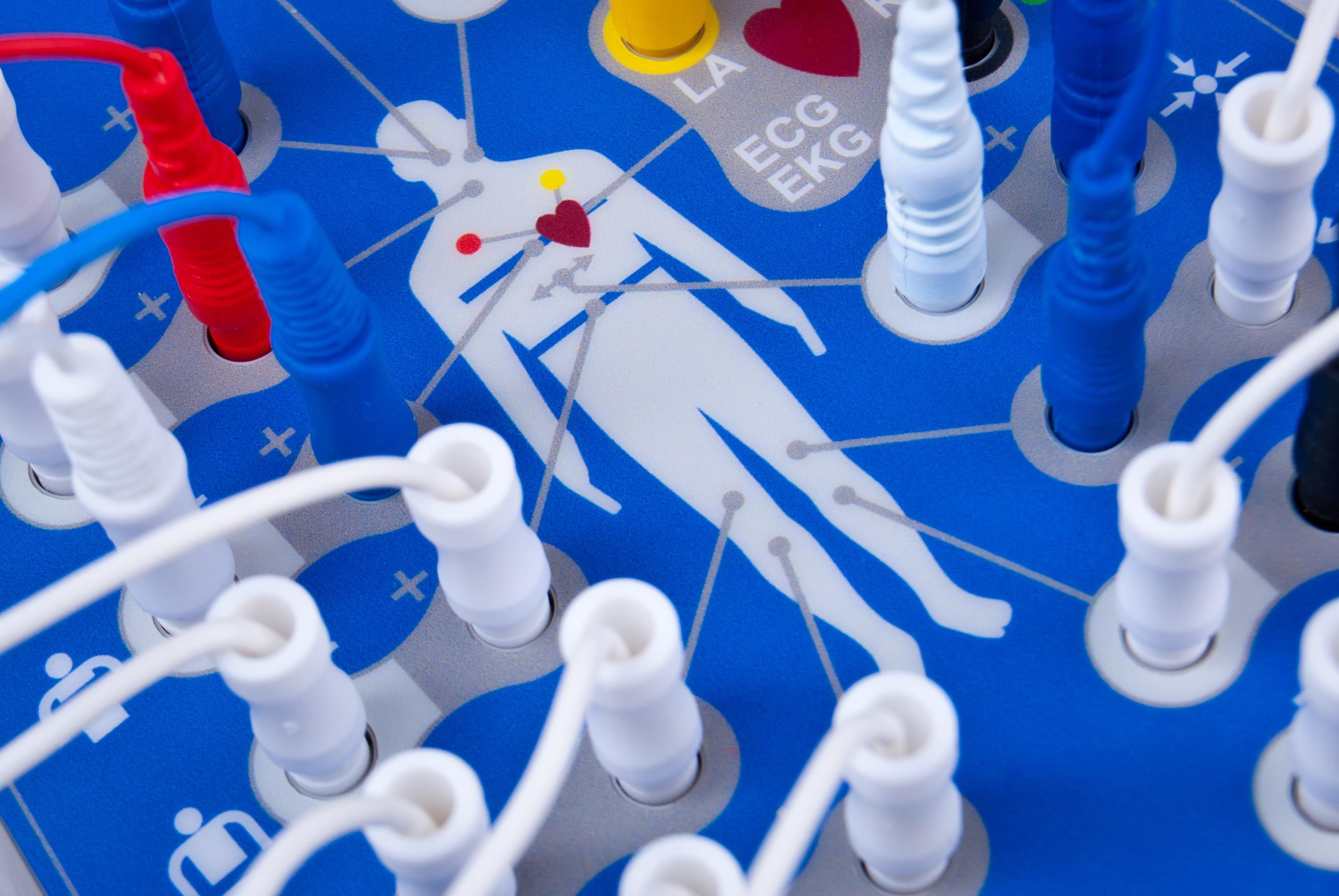 Biologie und Medizin für Nichtmediziner – Fortgeschrittenenkurs